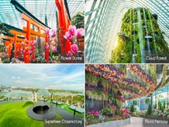 50% Off Tickets to Gardens by the Bay
