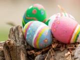 Eggcellent Easter Stay at Dorsett Singapore from SGD168