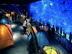 Ocean Dreams at Resorts World Sentosa