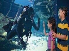 Enjoy 10% savings everytime you book a S.E.A. Aquarium VIP Experience with Your Mastercard®