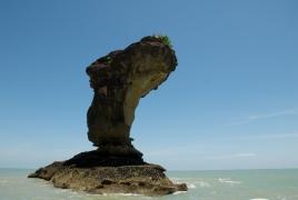 Kuching & Bako National Park