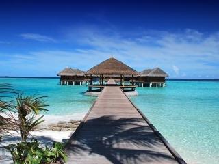 4D3N Vivanta By Taj Coral Reef