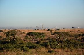 12D9N GREAT MIGRATION OF TANZANIA & KENYA (NOV - MAR)