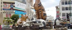 Highlights of Kuching & Kota Kinabalu (ABK-FM02)