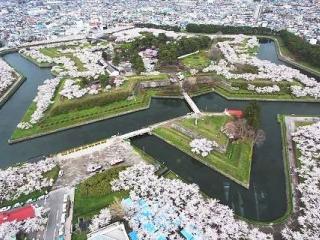 7D5N Hokkaido Love Story In Spring (Apr-May 2016)