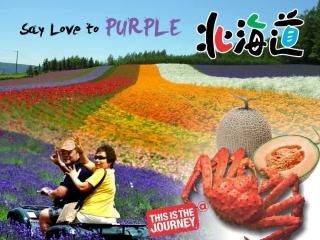 7D5N Hokkaido Purple Romance (Jul 2016)