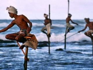 8 Days Paradise Sri Lanka Tour