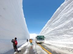 Snow wall & Tokyo