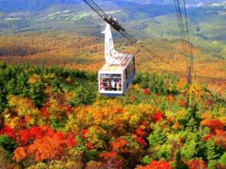 8D6N Colours of Hokkaido (9 Oct 2017)
