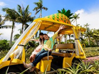 5/6D Okinawa Self Drive (Charter Flight Special)