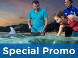 5 Days Gold Coast Tangalooma Dolphin + Farm Tour Experience {Daily Departure}