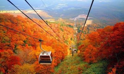 7D5N Hokkaido Autumn Romance