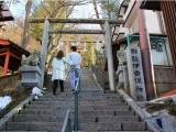 8D6N AMAZING JAPAN