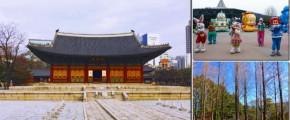 5D4N Arirang Korea