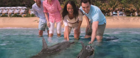 7D5N GOLD COAST FAMILY FUN AND DOLPHIN EXPERIENCE