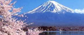 8D6N Spring Wonders ~Tokyo & Beyond~ (31 Mar)