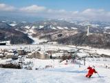 Korea Ski Fun