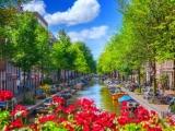 10D8N INSIGHTS OF NETHERLANDS (SUMMER)
