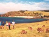 7D5N Best Of Adelaide + Kangaroo Island