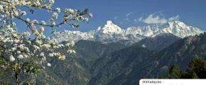 8D Golden Triangle + Kashmir Tour Package