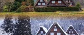 7D5N CHARMING GOLDEN ROUTE HONSHU