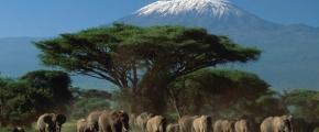 6 Days Kenyan Adventure