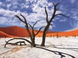 10D7N ENDLESS NAMIBIA