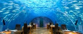 5 Nights Conrad Maldives Split Room Stay - 2019 Package