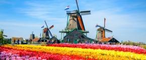10D8N INSIGHTS OF NETHERLANDS (NOV-MAR)