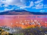 20D16N SOUTH AMERICA – ARGENTINA, BRAZIL, PERU & CHILE