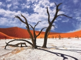 10D7N ENDLESS NAMIBIA (APR-OCT)