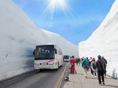 7/9D Central Japan, Shiragawa-Go, Alpine Route + Wakayama
