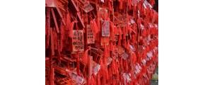 10 DAYS SCENIC YUNNAN KUNMING / DALI / LIJIANG/SHANGRI-LA + DONGCHUAN RED LAND
