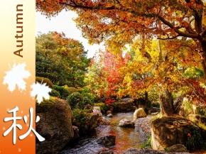 Autumn Breeze in Kyushu Japan 9D7N