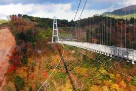 7D6N Autumn Kyushu Self Drive