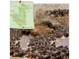 10D8N Kenya & Tanzania Wildebeest Migration