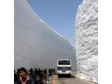 7D6N Japan Flora Alpine Scenic Route