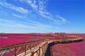8D7N DDALIAN RED BEACH SHENGYANG CHANGBAI MOUNTAIN HARBIN