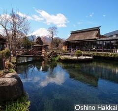 7D Honshu Shiragawa-go/Snow Monkey Park/ Wajayama