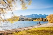 Deluxe New Zealand Road Trip
