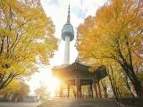 8 Days 6 Nights Unusual Korea With Oppa