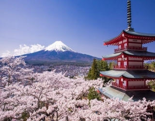 1-FOR-1 Special - 4D3N Japan Free & Easy