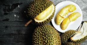 1D Yong Peng Durian Tour