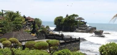 4D Bali Dolphin Tour  (2 to go)