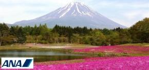 7D East Hokkaido Adventure