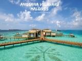4D3N Angsana Velavaru Maldives Package