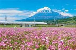 7D5N CENTRAL JAPAN FAMILY FUN + THEME PARK