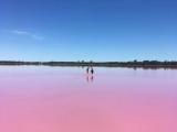 6D4N Western Australia Pink Lake