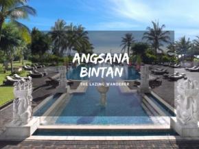 3D2N Angsana Relaxing Getaway