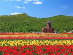 5D4N Hokkaido Spring Flower F&E Plus